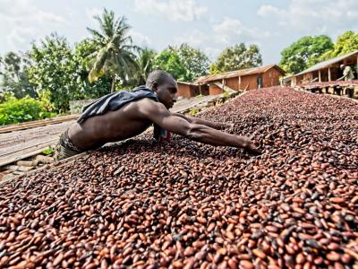 O tovar s certifikáciou Fairtrade je medzi slovenským zákazníkmi rastúci záujem. Najviac sa predáva kakao a káva, skokanmi roka sú bavlna a cukor.